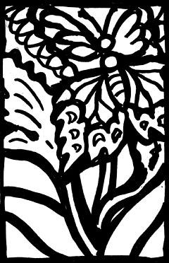 butterflywithplant240.jpg