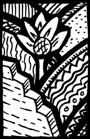 flowerpatterncrisscross300.jpg