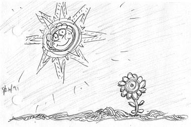 sunandflower91web.jpg