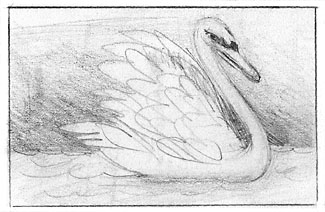 swanpencil87web.jpg