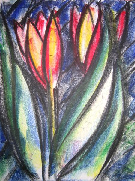 tulipbig2web.jpg