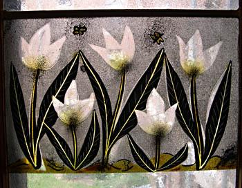 flowersbiggerwebster.jpg