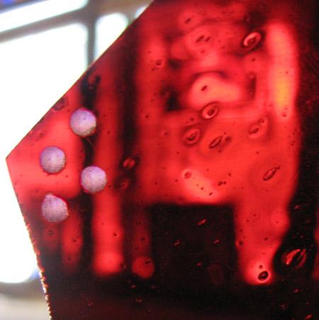 red-on-rose-450.jpg